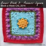 Princess Square Photo Tutorial Crochet Along