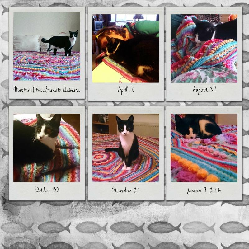 Sophie's Alternate Universe Crochet Pattern