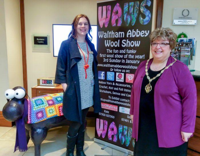 Waltham Abbey Wool Show 2017